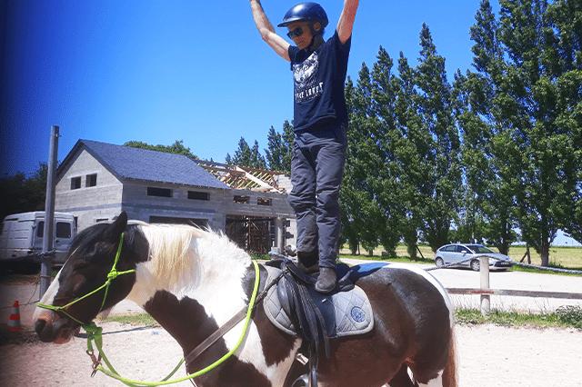 cours d'équitation pour adultes à Corseul